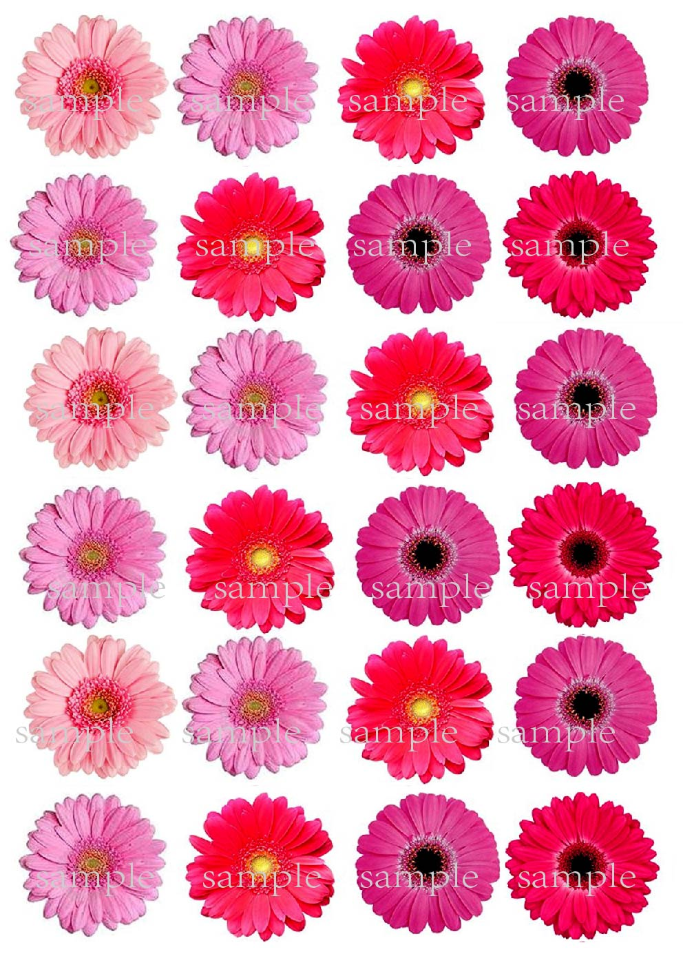 24 Mixed Pink Gerbera Flower Edible Cake Topper Wafer Rice Paper Amplo Putih Cupcake Decoration Birthday Wedding Decor Gift In Decorating Supplies