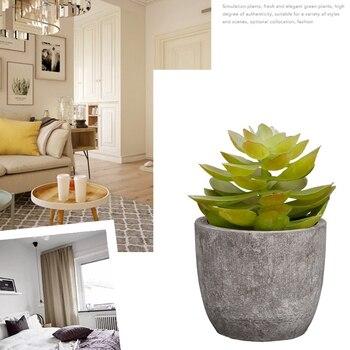 25b0e6095 Artificial al aire libre de la planta en maceta de Bonsai de Real Jardín de  Cactus escritorio cocina interior miniatura suculentas decoración del hogar