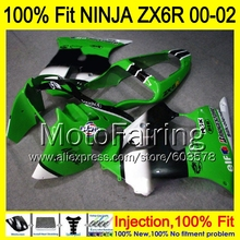 8Gifts Injection mold Body For KAWASAKI NINJA ZX-6R 00-02 1HM65 ZX 6R ZX6R 00 01 02 ZX636 636 2000 2001 2002 Fairing Green black