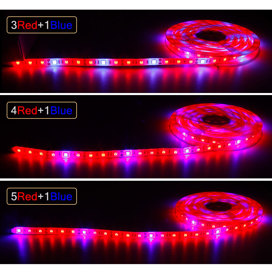 Image 2 - LED Grow light Full Spectrum 5M LED Strip light 5050 LED Flower Plant Phyto Growth lamps For Greenhouse Hydroponic Plant Growing-in LED Grow Lights from Lights & Lighting
