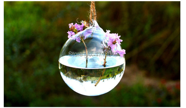 Dia 10cm Round Bottom Globe Hanging Water Planter Vase,water Culture Green  Plant For Home