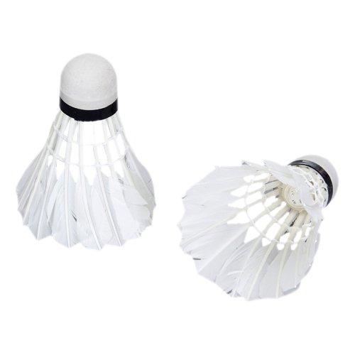 PROMOTION!LED Badminton Light