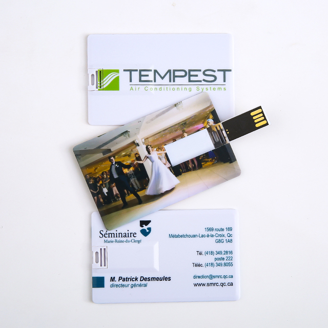 Customized Your Logo Design Promotional Products Business Card Usb