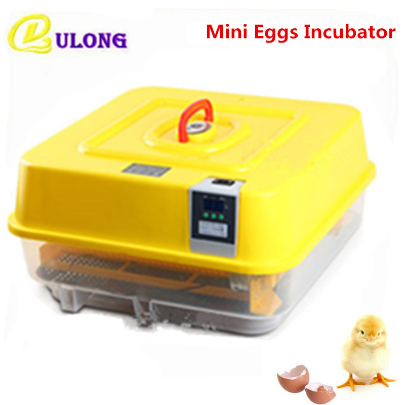 все цены на Fully Automatic Mini Household Temperature Control Chicken Goose Duck Quail Multifunctional Brooder Auto Hatcher