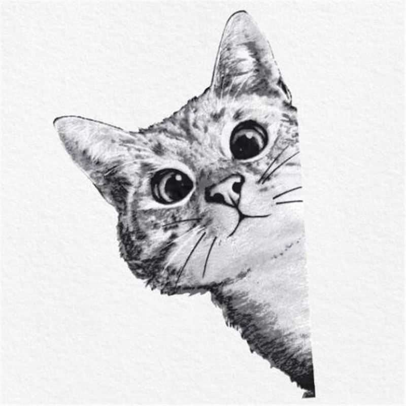 US $1 58 20% OFF Fashion Animal Patch DIY Clothes 28cm funny cat 3d  stickers Thermal Transfer Printing Iron on patches for clothing T shirt  Women-in