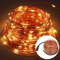 AISTARRY 98FT 30M 300LEDs DC12V Waterproof LED String Light Copper Wire Starry Light Warm White RGB
