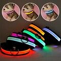 Collar LED Nylon Dog Pet Segurança Noite Brilho Piscando Colar Do Gato Do Cão Led Luminosos Pequenos Cães Coleiras Recarregável USB