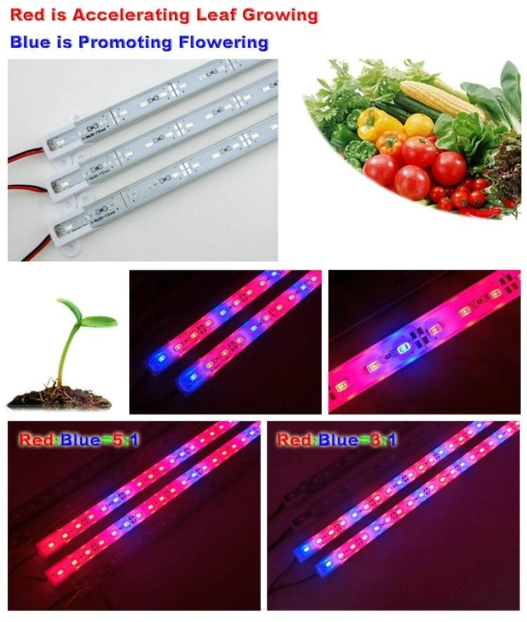 DC12V 0.5m 5630 نوار سفت و سخت محکم IP68 ضد آب Grow Light Red Blue 3: 1 برای گلخانه آکواریوم گیاه هیدروپونیک
