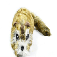 Rocky Raccoon Trick Robbie Magic Magic Trick Accessories Gimmick Classic Toys Comedy Wholesale