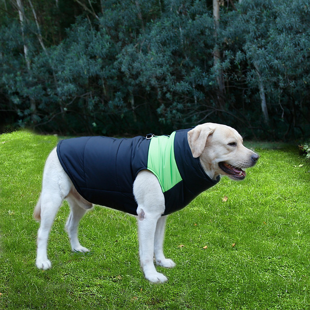 Waterproof Big Dog Coat Jacket Pet Dog Husky Golden Retriever Winter