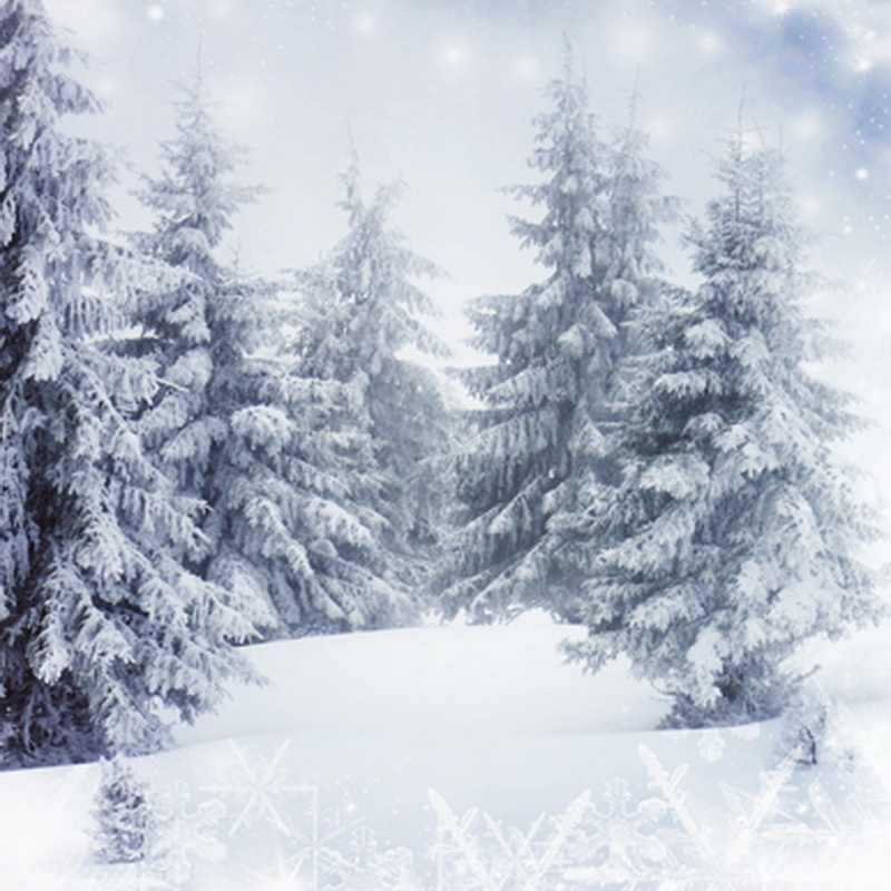 Customize vinyl fabric cloth print snow scenery photo studio backgrounds for model portrait photography backdrops props ST-081
