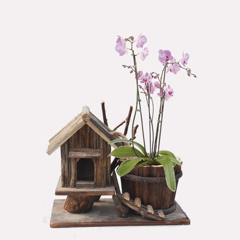 Caioffer Classic Maceteros Decorativos House Shaped Garden Wooden Flower Pots Plant Pot Decorative New Designer 2017 CJA01