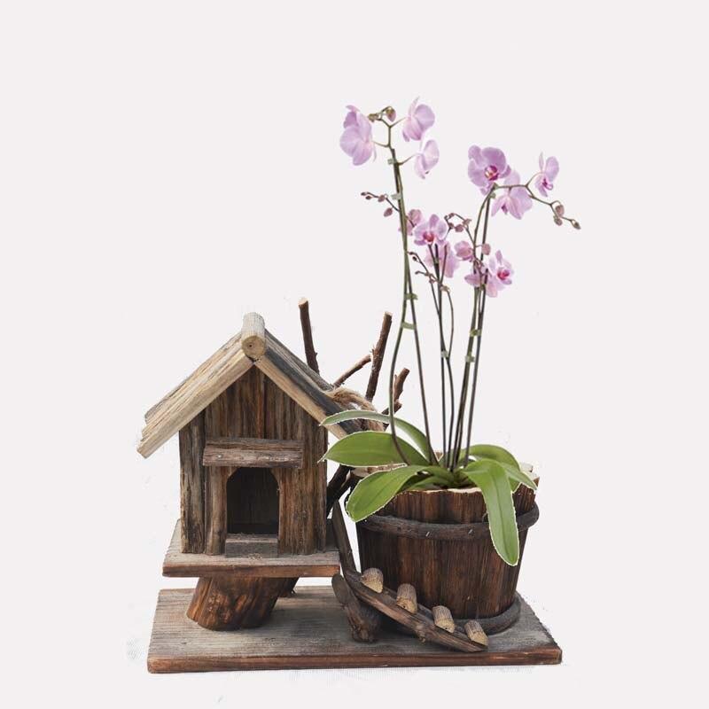 Madera planta de maceta compra lotes baratos de madera for Jardines decorativos para casas