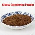 100g Red Reishi Extract/Duanwood reishi Mushroom Extract Powder/Ganoderma Lucidum 100% Pure Plant Powder Handmade Soap Additives