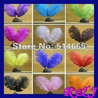 Free shipping 100pcs/lot 10-12inch 25-30cm mix 2 color dyed Ostrich drab feather ostrich plumes