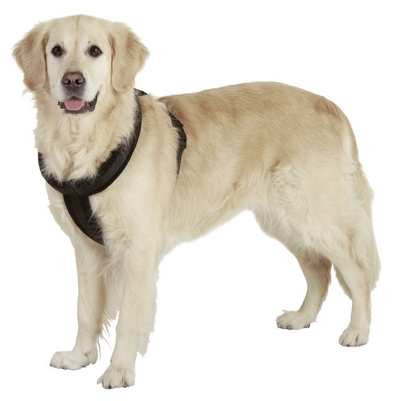 Large Dog Harness Cachorro Vest Adjustable Sport Working Chest Straps Pet Vest Harness Walking Training Supplies S M L XL