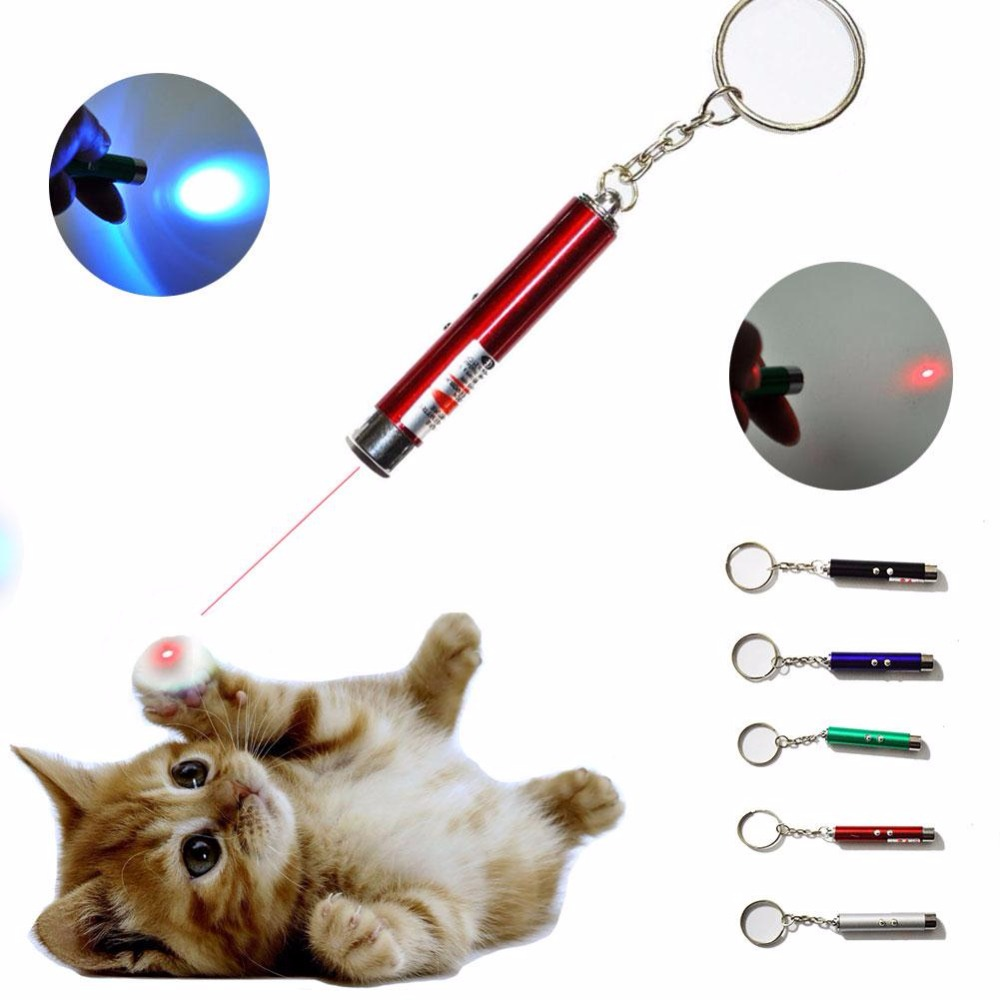 2In1 Red Laser Pointer Pen With LED Light Childrens Pet Cat Play Gift Toy