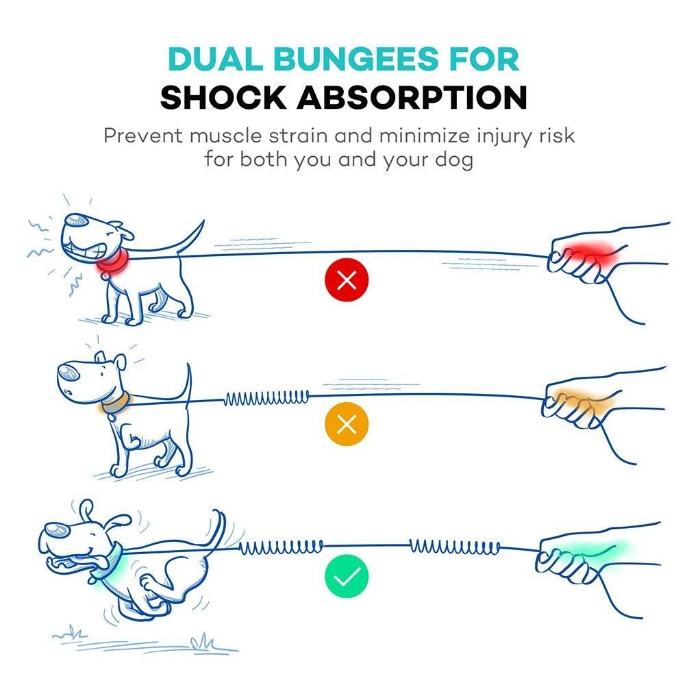 running hands free dog leash retractable elastic waist dog leash prairie dog diagram diagram of dog running [ 1000 x 1000 Pixel ]