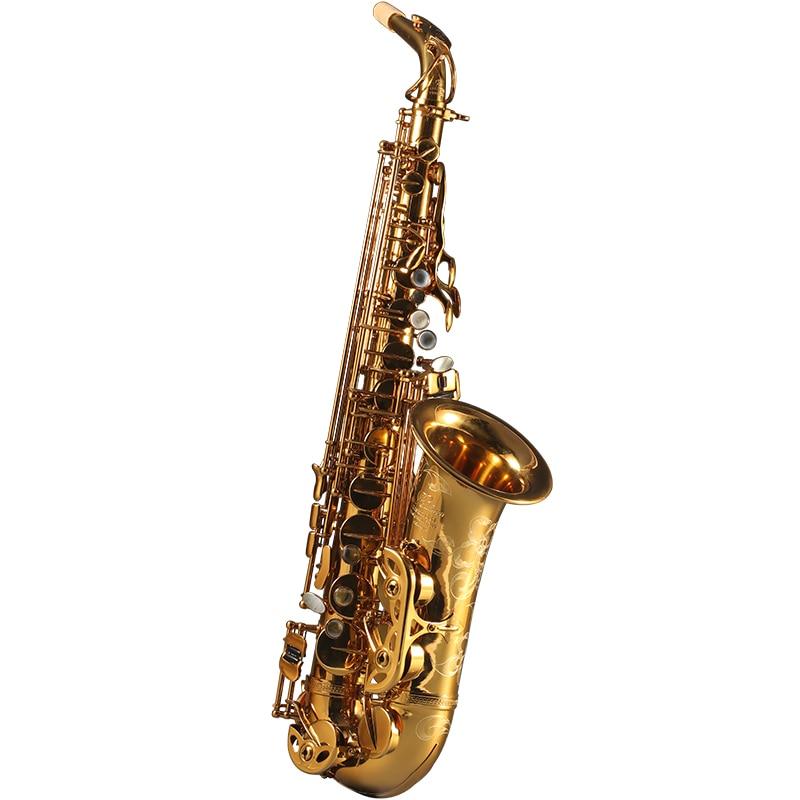 Francia Rollinsax Q3 Alto E saxofón plano latón instrumentos cuerpo oro laca para saxofón Alto adulto con Funda de cuero