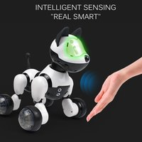 MG021 Voice Dialog Remote Control Smart Dog Electronic Pets Children's Educational Toy Dancing Walking Robot Dogs Birthday Gifts