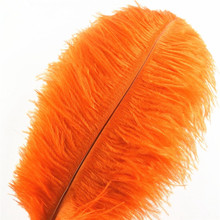 Wholasale Orange Ostrich Feathers for Crafts 15-70cm Carnival Costumes Party Home Wedding Decorations Natural Plumas Plumes