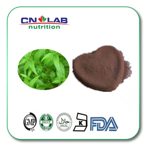 800g Nettle Root Extract for Sports nutrition 10:1 hot product nettle leaf extract 2% silicic acid