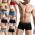 Sexy Men Breathable Comfortable Modal Men Underpants Underwear Man Pants Sexy Boxers Shorts for Male M-XXL 19