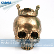 CMAM-PRC56 Antiqued Bronze Colored Life Size Human Skull Anatomy Model for Dec