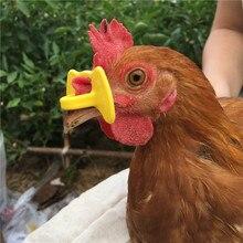 500 товары очки для курицы очки для защиты от морщин очки для благовоний фазана новое оборудование для курицы бесплатная доставка