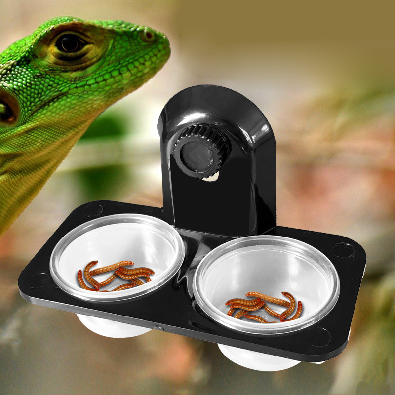 Crawler Pet Feeder Bowl Basin Food Water Pot Reptile Turtle Tortoise Scorpion Lizard Crabs Pets Supplies Feeding ledge