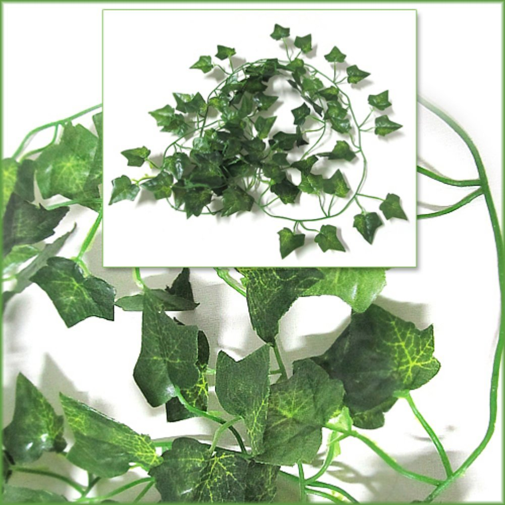 US $1.02 16% OFF|Best selling Zehui Garden Home Decor Fake Plant Green on house vines, house stars, house home, house slugs, house chemicals, house gifts, house design, house ferns, house flowers, house crafts, house decorations, house nature, house plans, house fire, house people, house rodents, house candy, house mites, house cars, house family,