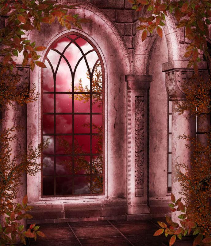 картинки окон для замка один самых редких