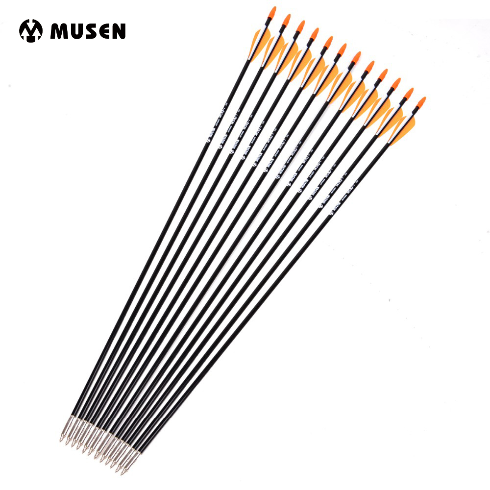 31-Inches Fiberglass Arrows Bow Archery Shooting Hunting-Practice OD Plastic With