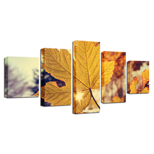 HD Printing 5 Pieces Maple Leaf Wall Art Canvas Paintings