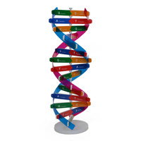 Human Genetic Model DNA Double Helix Diy Biological Science Experiment Equipment Medical Popular Science Teaching AIDS
