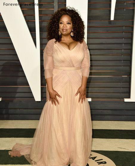 Oprah Winfrey Oscar Celebrity Dresses plus size v neck sheath chiffon with long sleeves mother of bride groom dresses BO9521 144 (11)