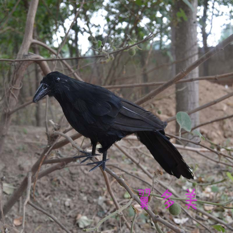 new black simulation crow toy plastic furs crow model doll gift about 30cm 2204 in Stuffed Plush Animals from Toys Hobbies