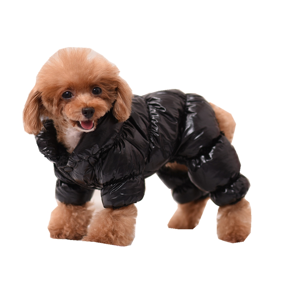Dogs, Halloween, Christmas, Clothes, Manteau, Clothing