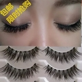Free shipping 2014 hot sale 5 Pairs/lot  natural long thick cocking up girl High quality false eyelashes charming fake eyelashes