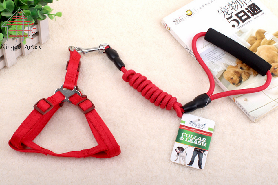 2017 Pet Leashes For Dogs Training Leash Slip Lead Strap Adjustable Dog Collar <font><b>Led</b></font> Collar For Small Dogs Pre-sale dont buy