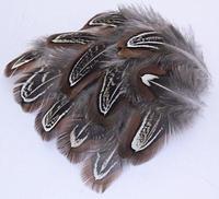 Livraison gratuite 100 pcs 4 - 7 cm / 1.5 - 3in réel naturel faisan bricolage broche cheveux pince cerceau boucles d'oreilles accessoires gros