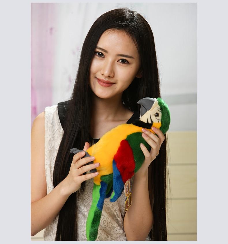 Environ 27 cm belle couleur vert perroquet en peluche jouet simulation perroquet oiseau doux poupée cadeau d'anniversaire s0013