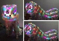 Многоцветные светодиодные фонари Лев танцевальный костюм Северной Стиль frp глава длинные Мех животных событие церемония празднование наря
