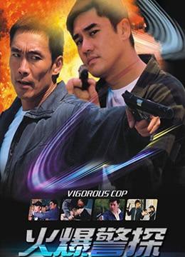 《火爆警探》2003年中国大陆动作,犯罪电影在线观看