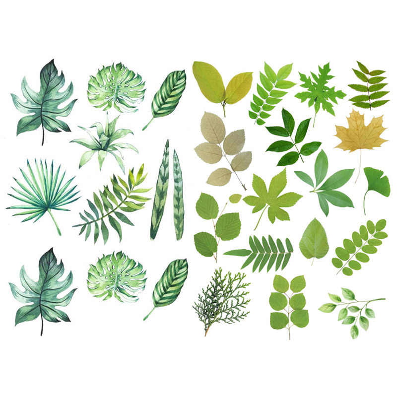 1 Pcs Green Plant Leaves Precut Cute Aesthetic Book Journal Stickers Scrapbooking Stationery Sticker Flakes Art Supplies Assorted Stickers Aliexpress