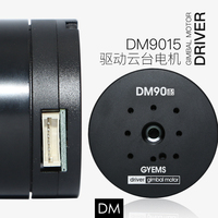 DM 9010 9015 built driver encorder gimbal brushless servo motor for robot arm gimbal foc controller