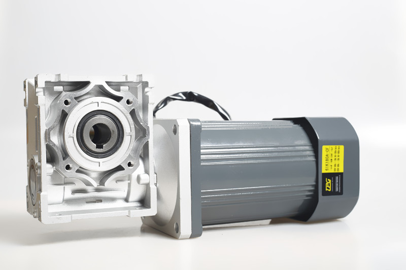 AC 220V 250W with RV40 RV50 worm gearbox High torque Constant speed worm Gear motor Drive