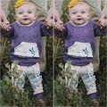 2 Шт./компл. Горячий Продавать Осень зима Симпатичные Новорожденный Ребенок Девушки Серый С Капюшоном Топы + Длинные Цветочные Брюки 2 Шт. Наряды набор Одежды