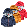 Male child outdoor jacket with a hood baby autumn top cardigan 2016 children's clothing child casual outerwear