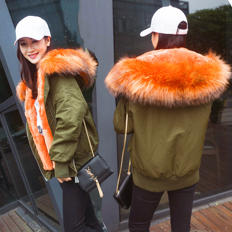 free shipping on sale New arrival real rex rabbit fur lined bomber jacket with big collar in stock corporate real estate management in tanzania